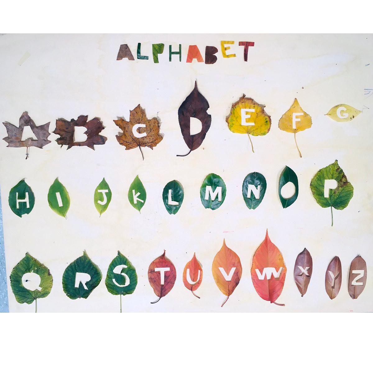 alph01_1200