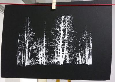 Waldbrand-Colorado_Marieke-Uijterschout1_1200x800
